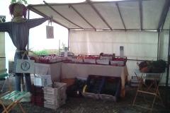Le potager de Nohant au marché bio